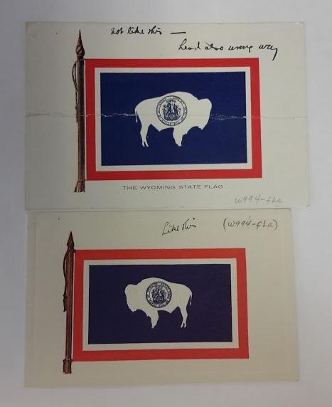 flag bison orientation