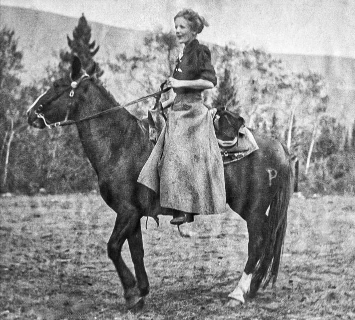 Parmalee Horse 1911