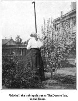 Dr. Wergeland admiring her crab-apple tree in full bloom, Glimpses From Agnes Mathilde Wergeland's Life pg 164